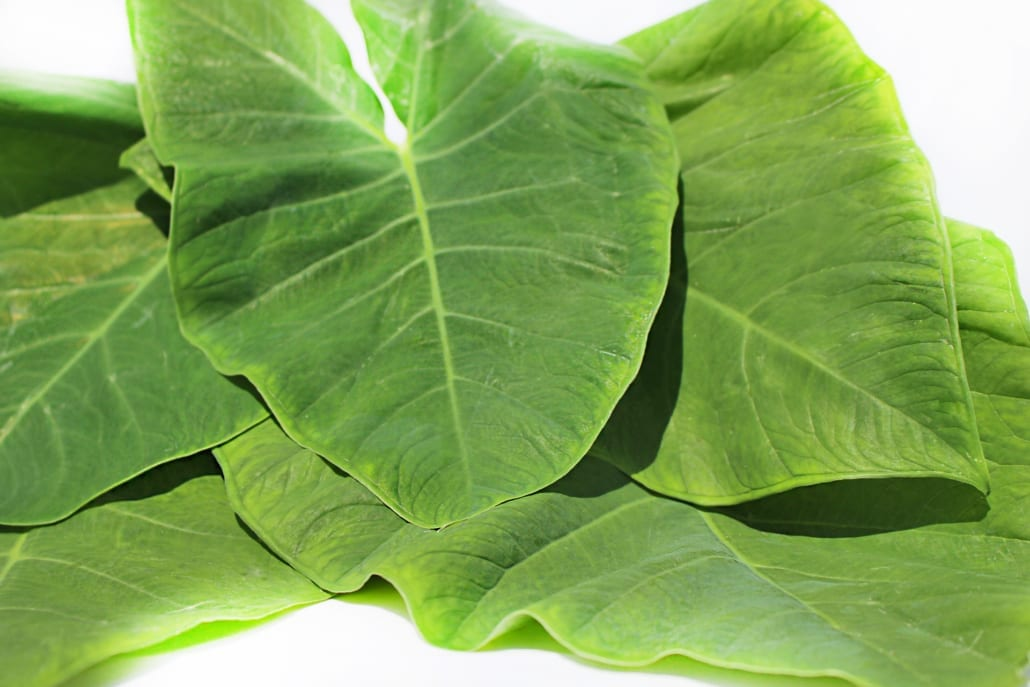 Taro Leaves Tayerblad