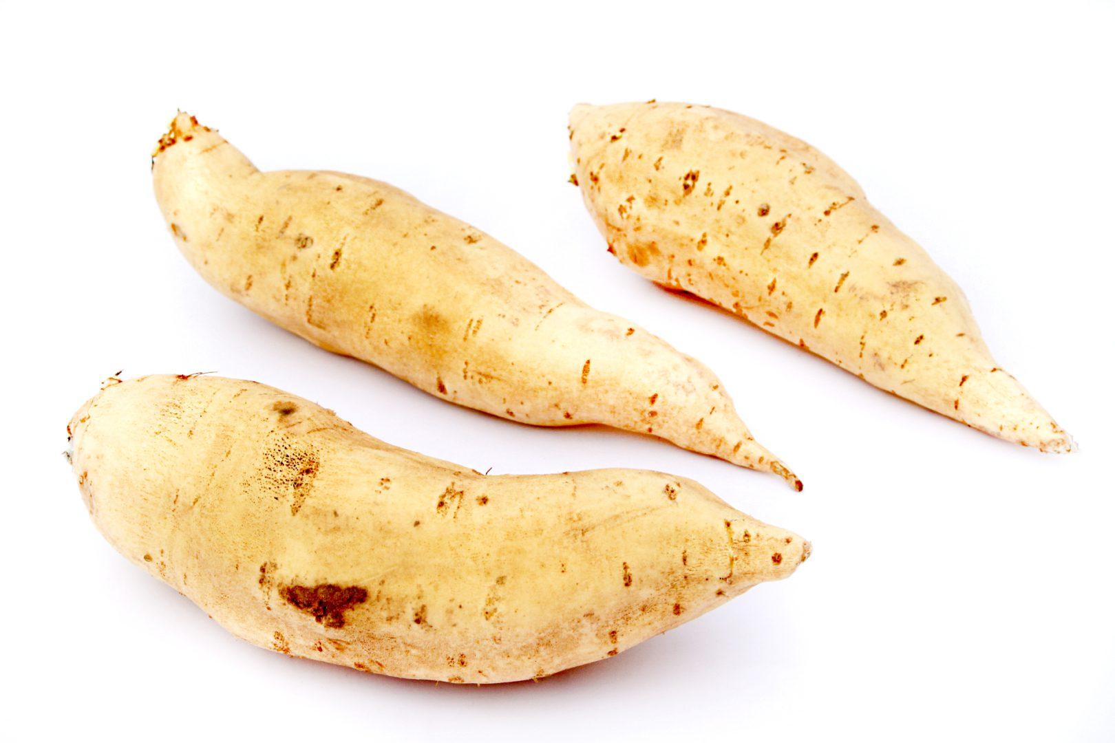 Zoete aardappel wit